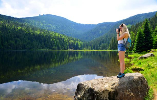 fotograf som tar föreställer foto i nationalpark bayersk skog. tyskland. - bayerischer wald bildbanksfoton och bilder