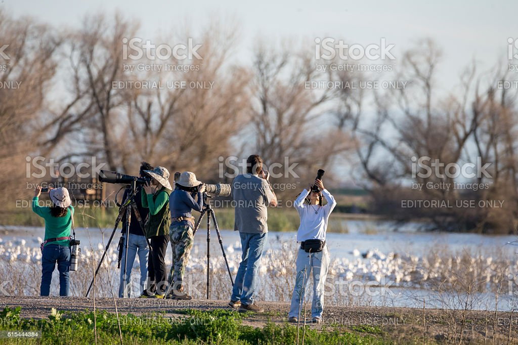Photographers and Tourists at Merced National Wildlife Refuge, California stock photo