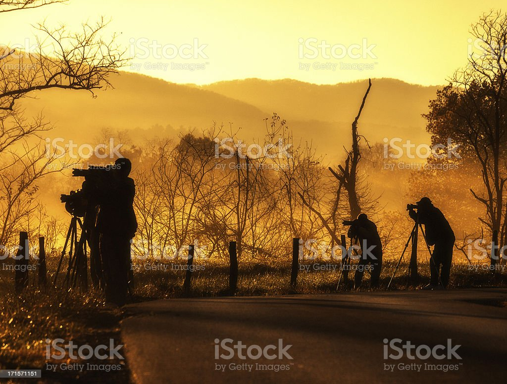 Photographers in action royalty-free stock photo
