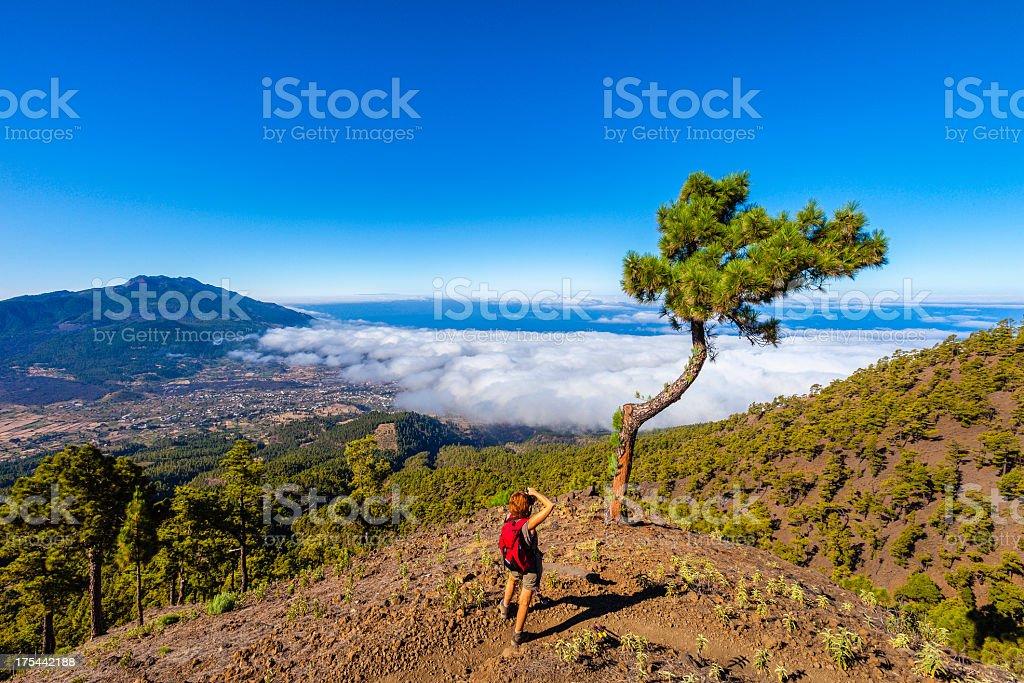 Photographing La Palma Landscape stock photo