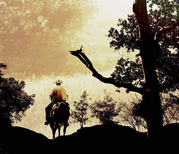 Photography and graphic designed cowboy riding in the mountains. stock photo