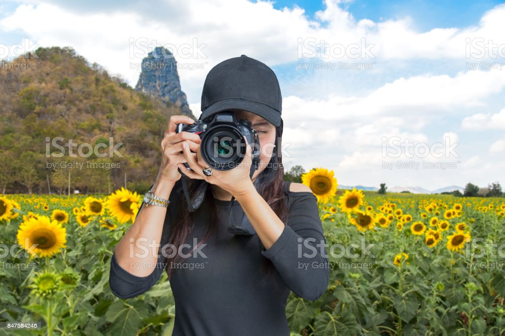 Photography and Traveler  asian women covering her face with the camera in the sunflower field, Thailand stock photo