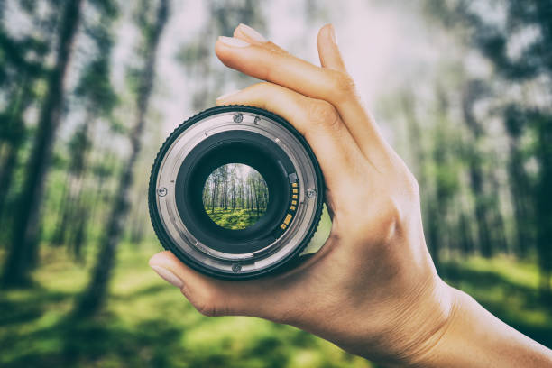 Photography camera lens concept. photography view camera photographer lens forest trees lense through video photo digital glass hand blurred focus people concept - stock image image focus technique stock pictures, royalty-free photos & images