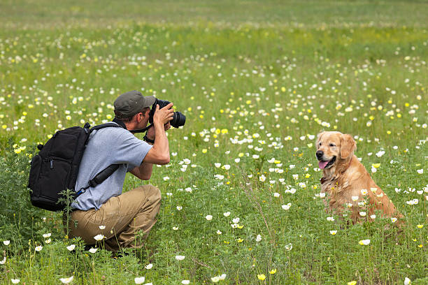 Photography man and his dog on a meadow stock photo