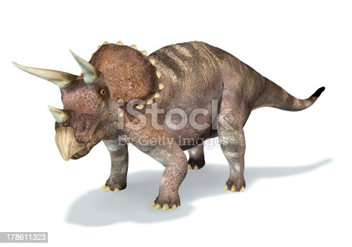 Photorealistic 3D rendering of a Triceratops. At white background with drop shadow and clipping path included.