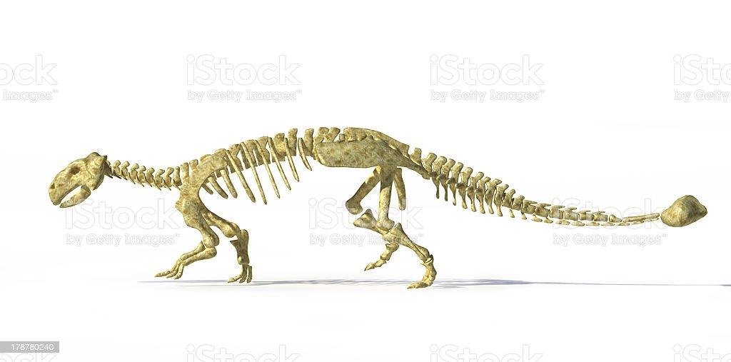 Fotorrealísticos representação artística em 3D de Anquilossauro completo esqueleto. - foto de acervo