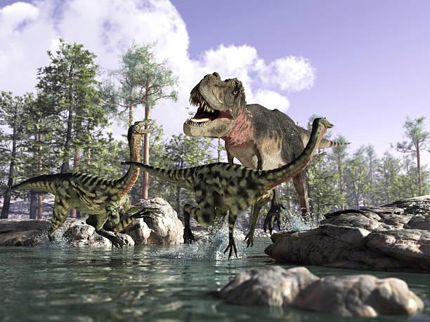 fotorealistischen 3d-szene mit ein tyrannosaurus rex, jagen zwei gallimimus. - dinosaurier illustration stock-fotos und bilder