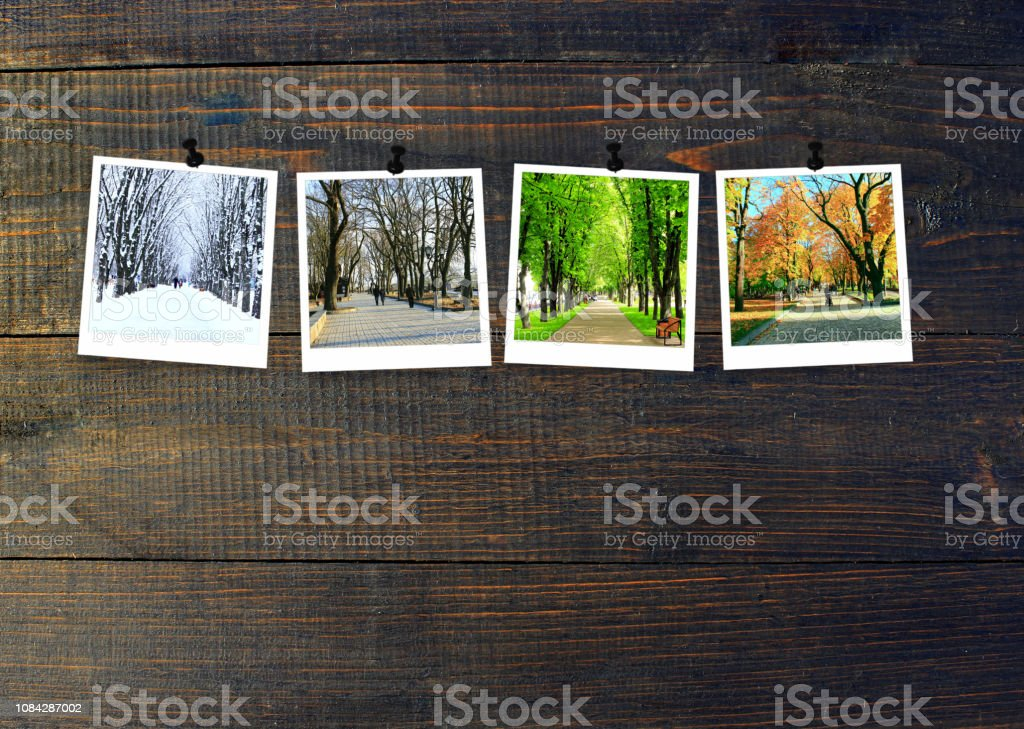 Photos of four seasons attached to dark wooden wall. Seasons on dark background stock photo