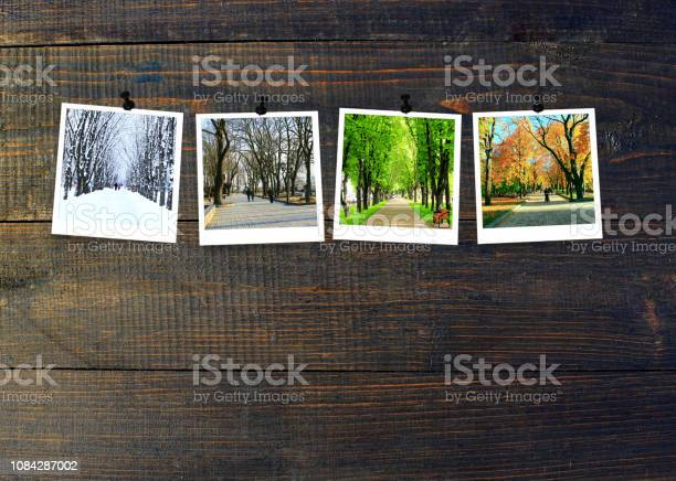 Photo of Photos of four seasons attached to dark wooden wall. Seasons on dark background