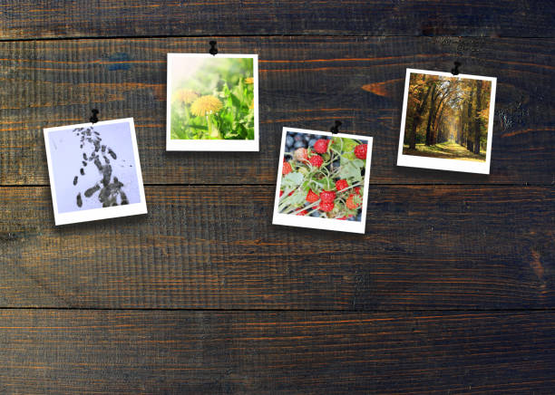 zdjęcia z czterech pór roku przymocowane do ciemnej drewnianej ściany. pory roku na ciemnym tle - four seasons zdjęcia i obrazy z banku zdjęć