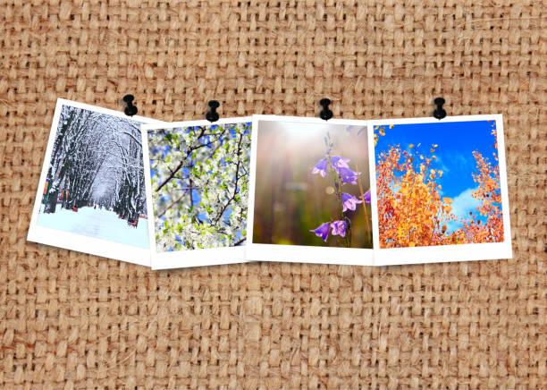zdjęcia z czterech sezonów dołączone do zwolnienia. fotografia pór roku na tkaninie - four seasons zdjęcia i obrazy z banku zdjęć