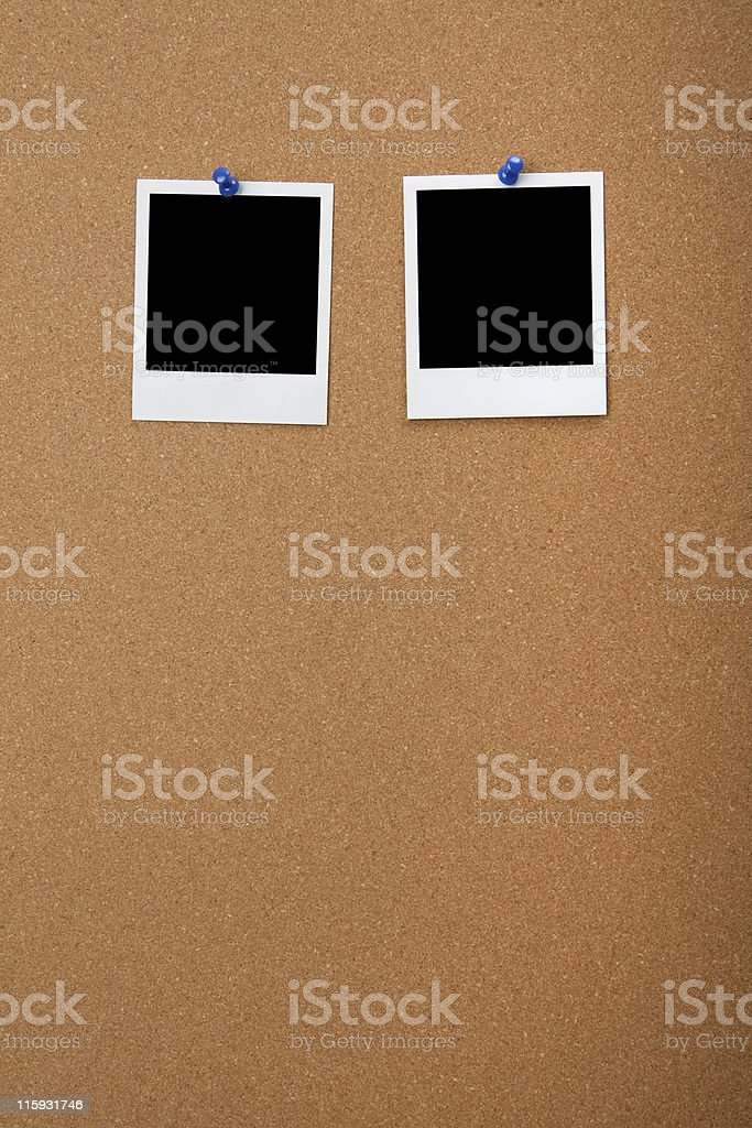 Photos on Cork Board royalty-free stock photo