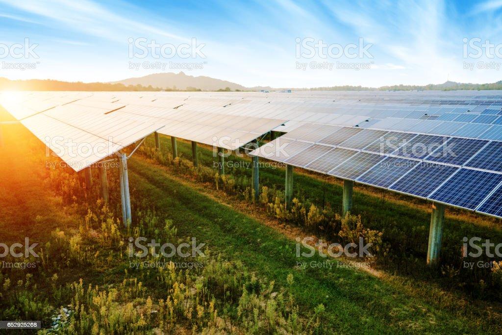 Photovoltaik-Module für erneuerbare elektrische Produktion, Navarra, Aragon, Spanien. – Foto