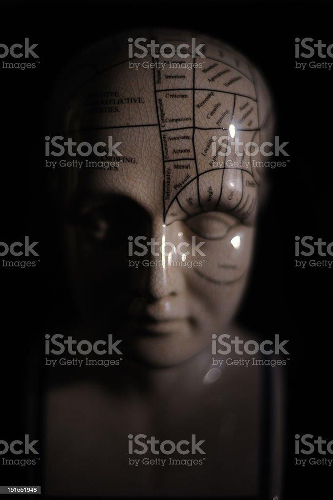 Phrenology Sculpture stock photo