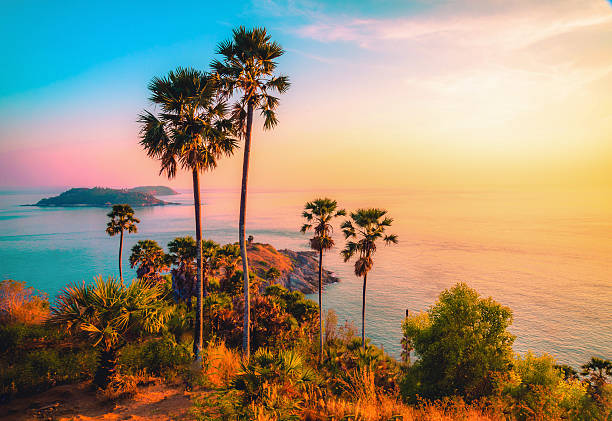 phromthep cape viewpoint at twilight sky in phuket,thailand - phuket stock photos and pictures