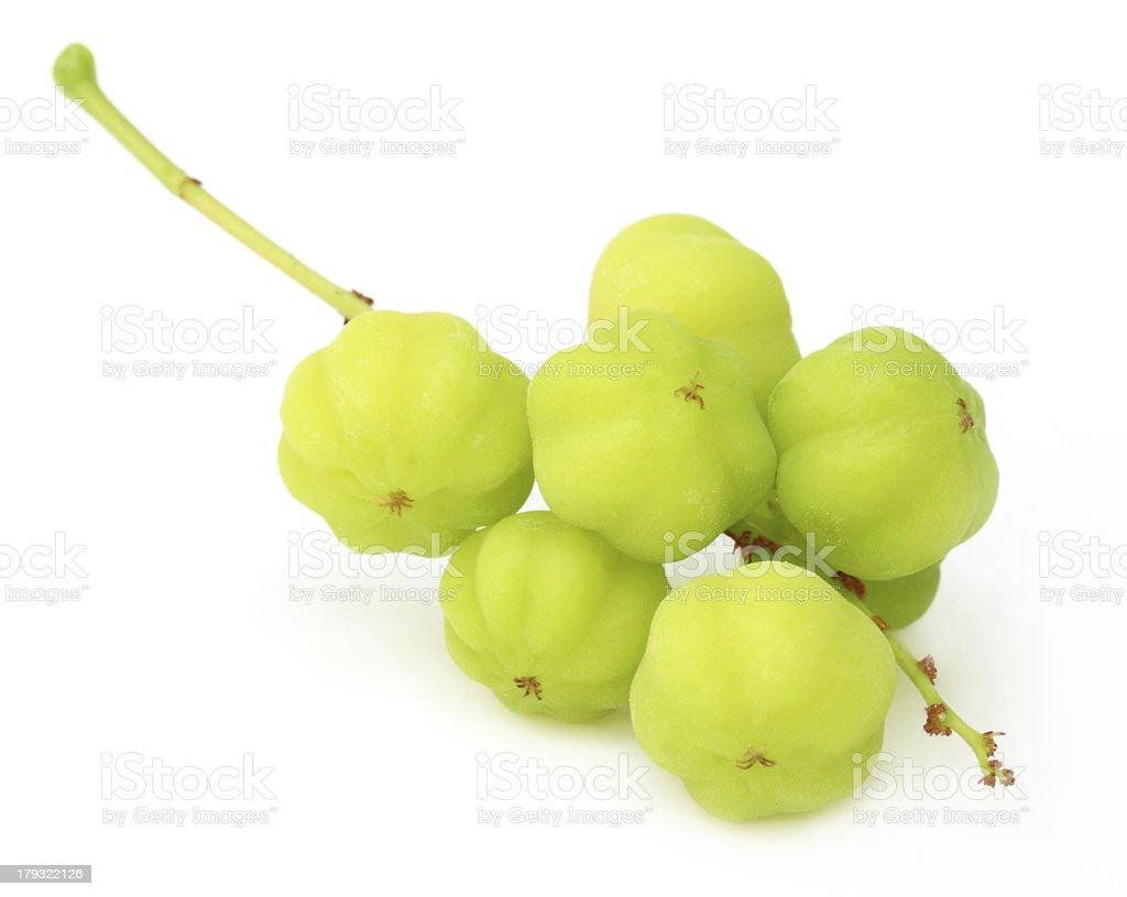Phyllanthus acidus or Orboroi fruits stock photo