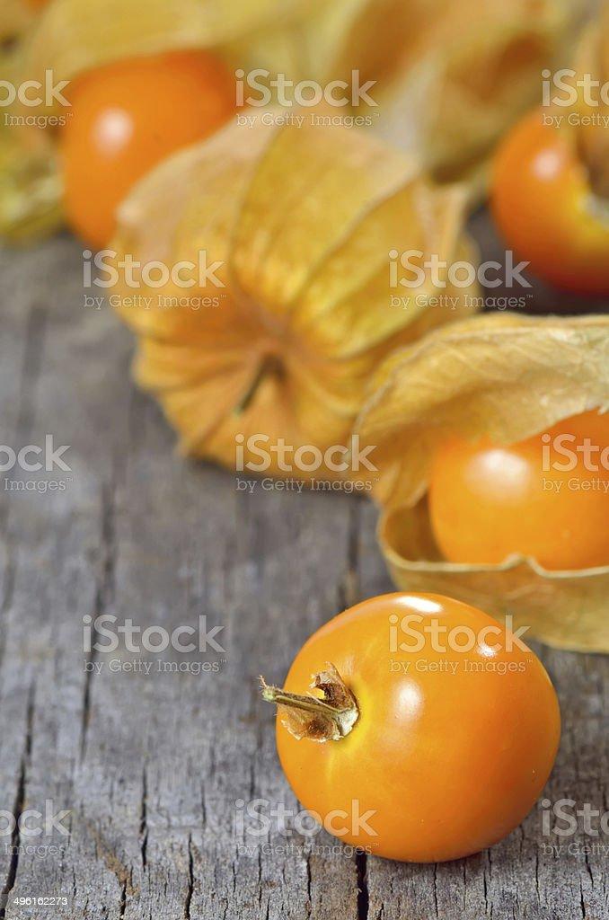 Physalis fruit stock photo