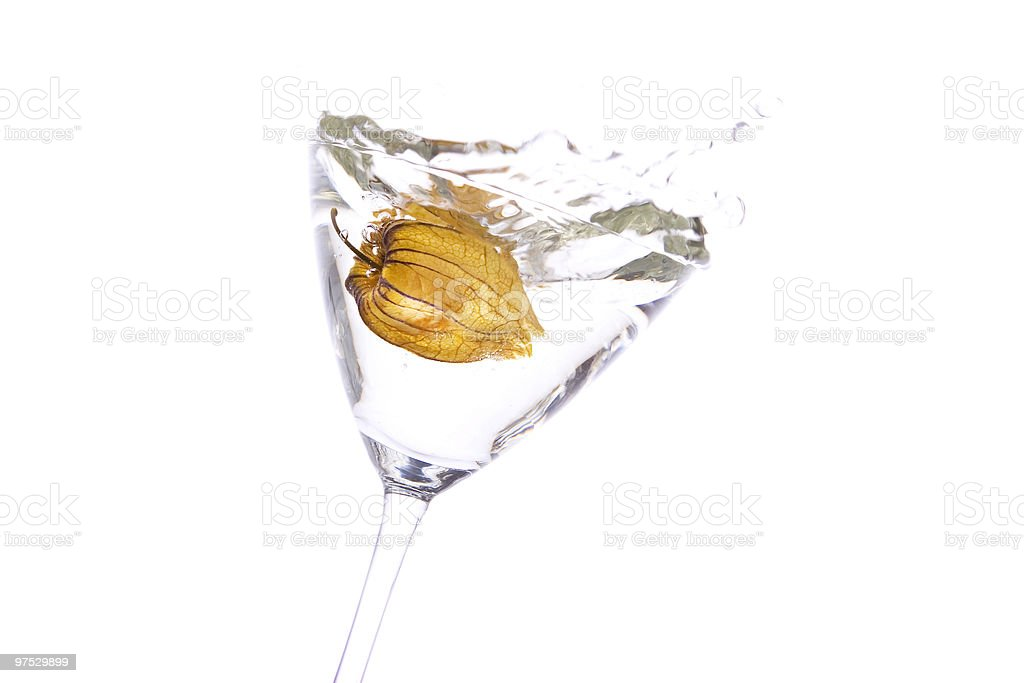 Physalis in Cocktailglass royalty-free stock photo