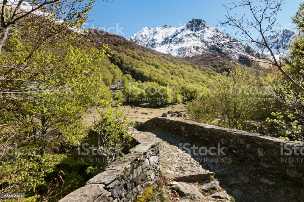 Pianezza Bridge and Snowy Mountain on the Val Darengo Trail royaltyfri bildbanksbilder