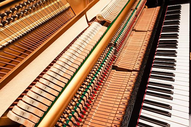 Klavierhammer
