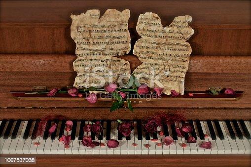 Piano avec roses, pétales et feuilles