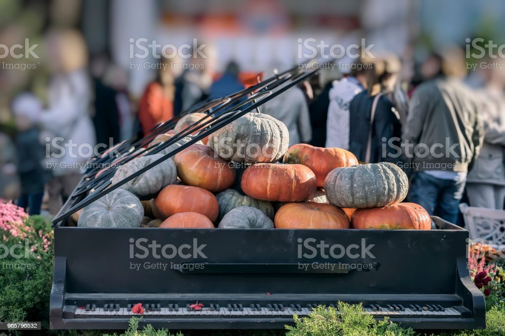 Piano with an open lid full of organic real pumpkins. Thanksgiving Day and Halloween festive decoration and concept. Autumn, fall background - Royalty-free Abstract Stock Photo