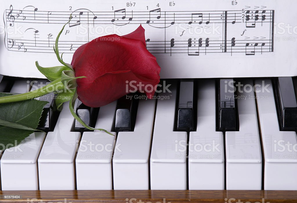 Piano with Rose royalty-free stock photo