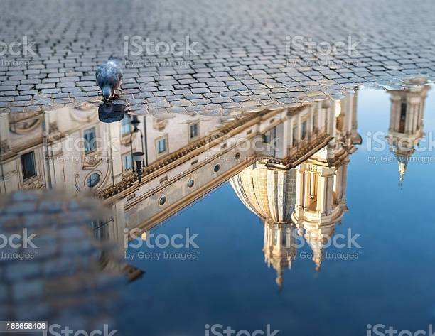 Puddle reflection with church on cobblestone with pigeon, Piazza Navona - Roma Italy