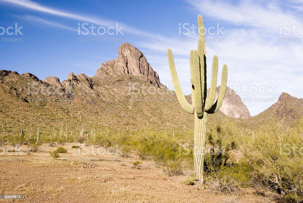 Picacho mountains royalty-free stock photo
