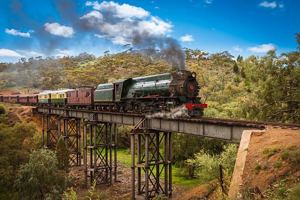 Pichi Richi tourist steam train stock photo
