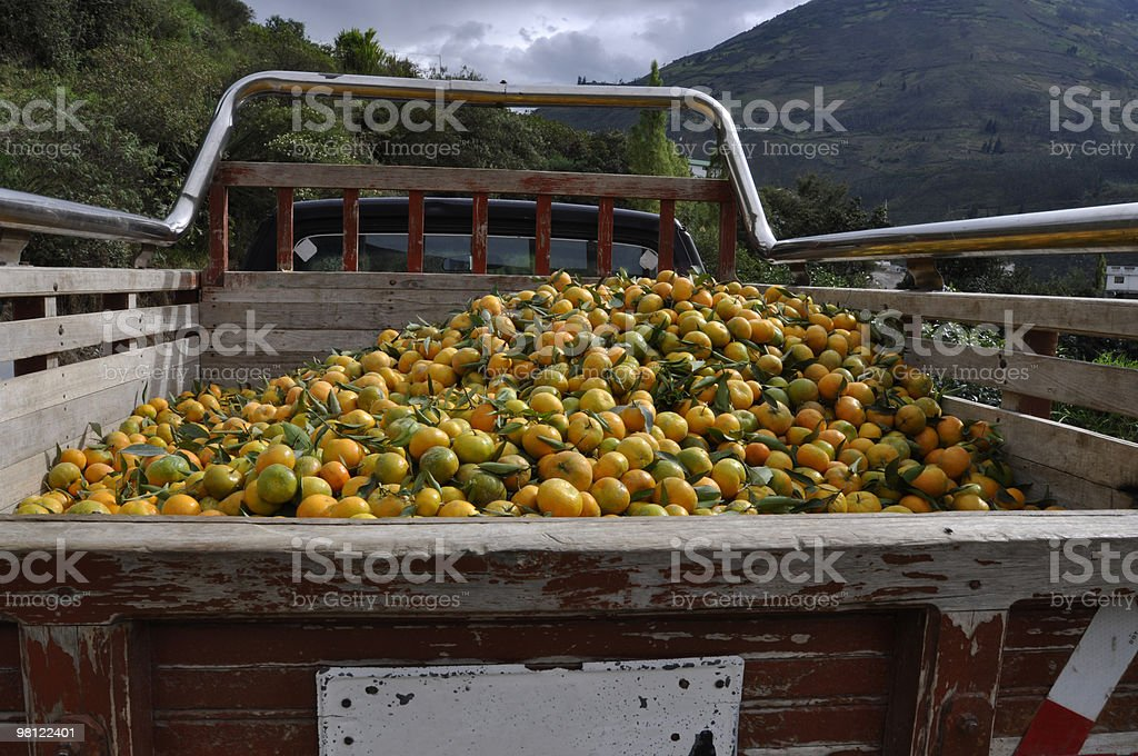 Pick up truck carrying tangerines royalty-free stock photo