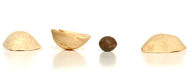 Pick which one Three nut shells with a pea under one, pick which one has the pea.  Kind of like three card Monty played on the streets. shell game stock pictures, royalty-free photos & images