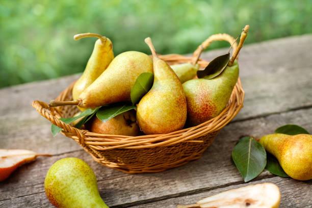 picked pears in wicker basket - pera foto e immagini stock