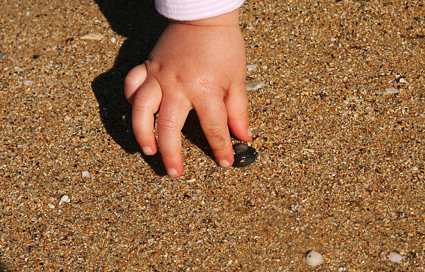 picking up shells - little girl picking up sea shells at the beach stock pictures, royalty-free photos & images