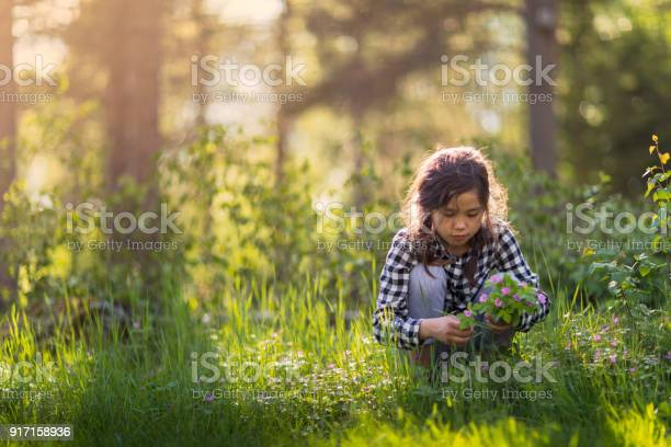 Picking wildflowers picture id917158936?b=1&k=6&m=917158936&s=612x612&h=q0hfywl38h73tau4qwlhcmxen vzv  bdcj0khddz q=