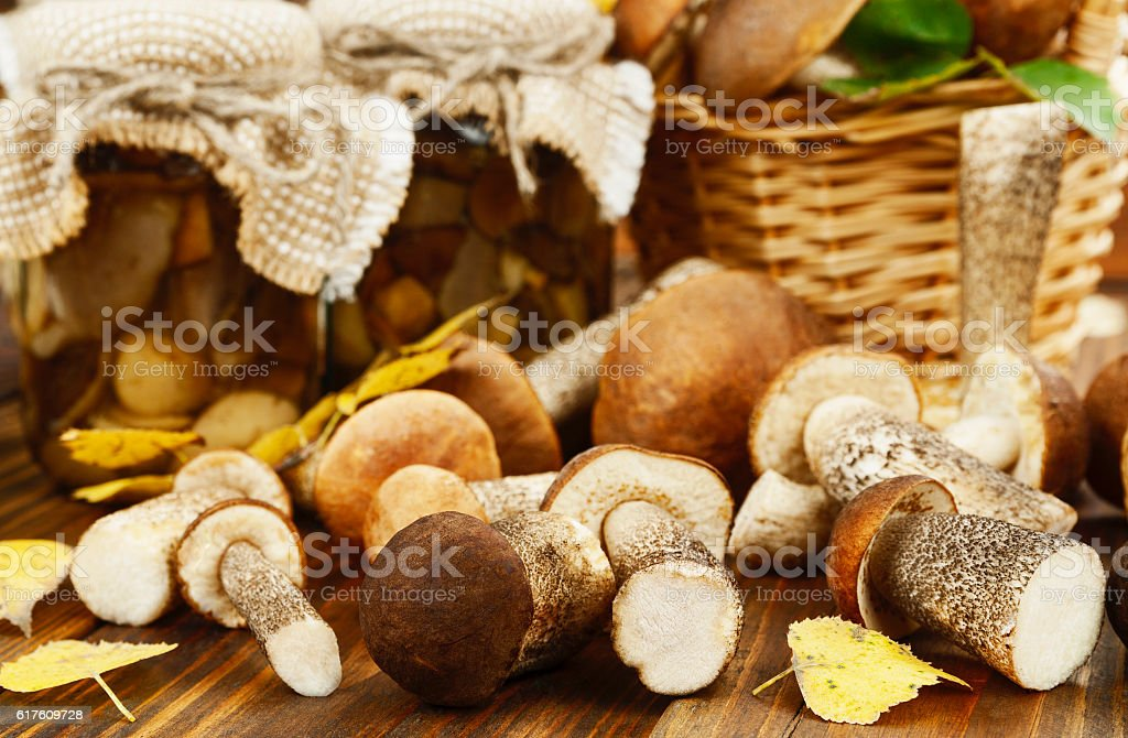 Pickled and fresh mushrooms stock photo