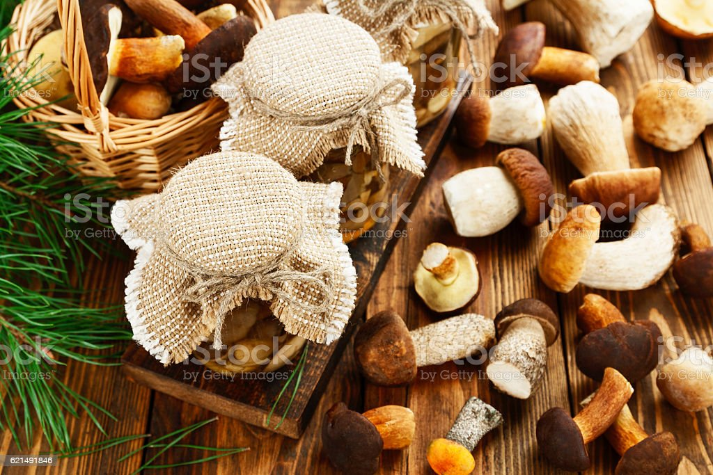 Pickled and fresh mushrooms foto stock royalty-free