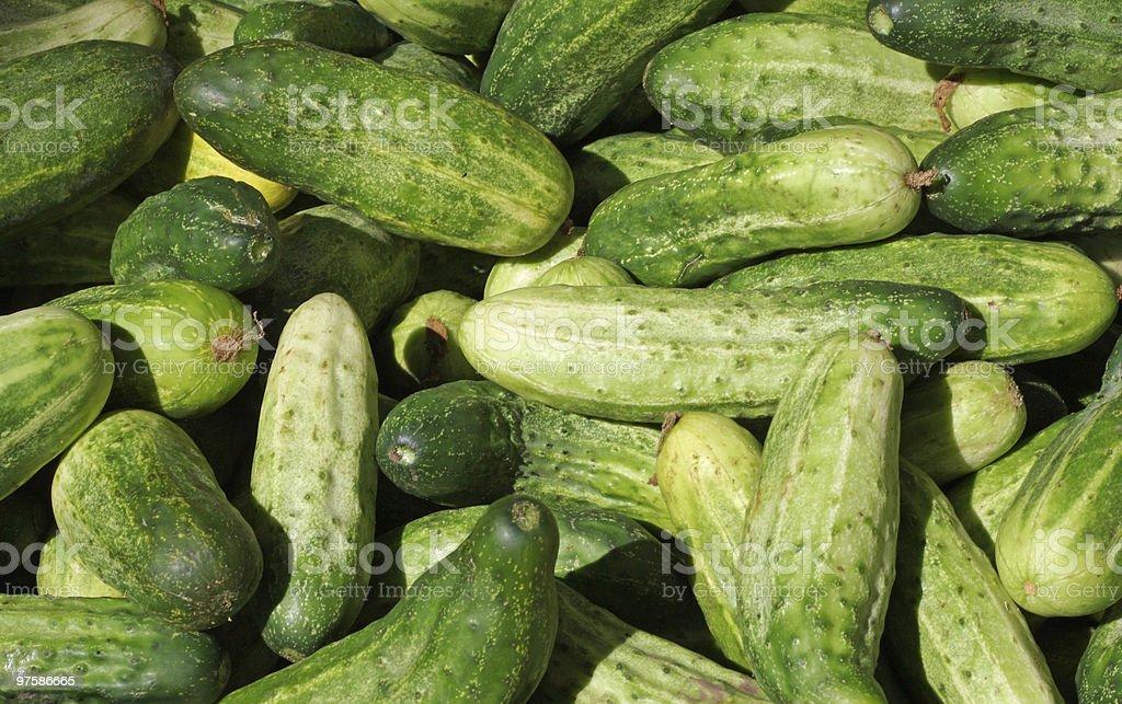 Pickling concombres dans le Farmer's Market photo libre de droits