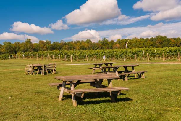 Picknick-Bereich auf einem Weingut – Foto
