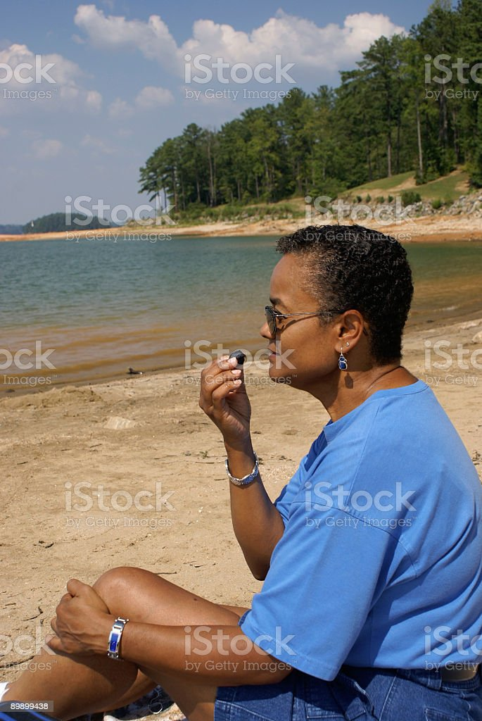 Picnic at Lake Lanier Georgia royalty-free stock photo