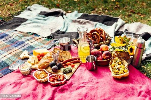istock Picnic at park 1091786930