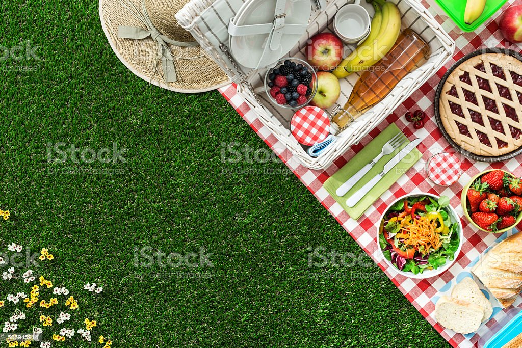 Picnic at the park stock photo