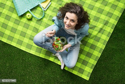 istock Picnic at the park 623207940