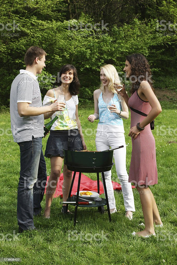 Picnic Barbeque royalty-free stock photo