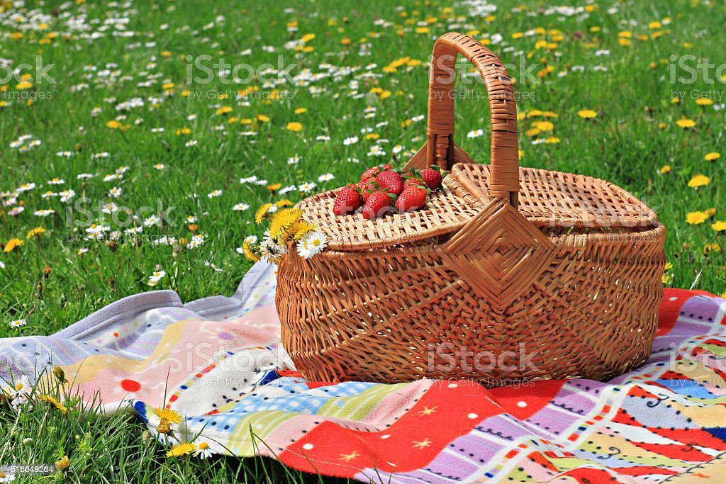 Picnic basket and blanket on green grass in park, nature. stock photo