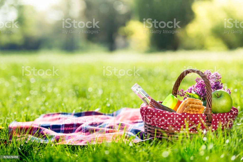 picnic basket y manta al aire libre - foto de stock