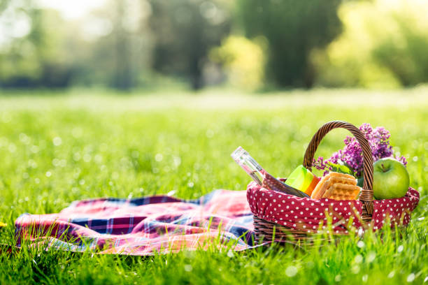 picnic basket and blanket outdoors - picnic foto e immagini stock
