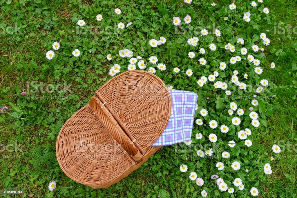 Picknick-Korb und blau weiß karierten Serviette auf Rasen – Foto