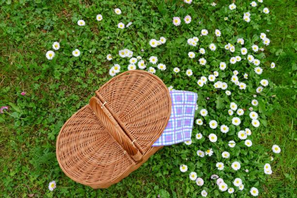 Picnic basket and blue white checkered napkin on lawn stock photo