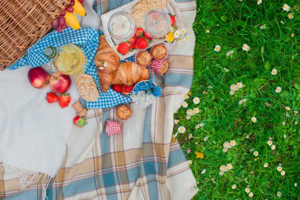 picknick-korb und essen. grüne wiese mit blumen. frühling in den niederlanden. urlaub. ansicht von oben. - kariertes hintergrundsbild stock-fotos und bilder